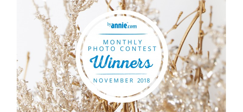 November 2018 Photo Contest Winners