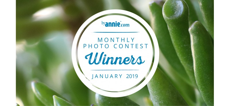 January 2019 Photo Contest Winners
